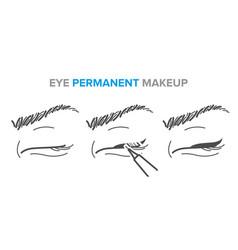 Eye permanent makeup eyeliner procedure vector