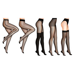 Female legs and stockings realistic vector