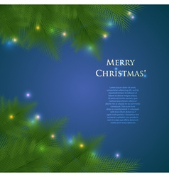 greeting christmas card with spruce branches and vector image