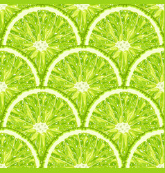 Seamless pattern of lime slice realistic citrus vector