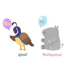 isolated alphabet letter q-quailr-rhinoceros vector image vector image