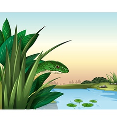 A green snake at the pond vector image