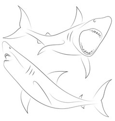 black line shark attacks on white background set vector image