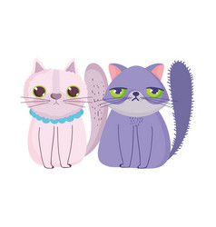 Cartoon cats sitting domestic feline pets vector