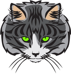 cat muzzle vector image