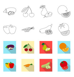 Design of vegetable and fruit symbol vector