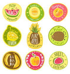 fruit labels juice fresh organic fruit natural vector image