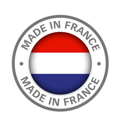 made in france flag icon vector image