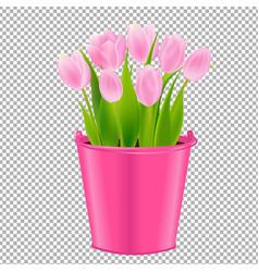 Pink tulip in pot vector