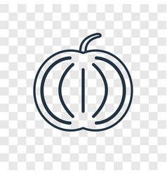 pumpkin concept linear icon isolated on vector image