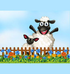 Sheep in garden vector