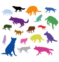set of dogs in different colors vector image vector image