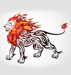 tribal flame lion vector image