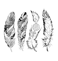Stylized feathers vector image vector image