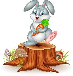 Little bunny holding carrot on tree stump vector image