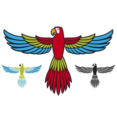 parrot flying vector image vector image