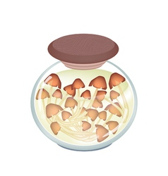A Jar of Delicious Marinated Forest Mushrooms vector