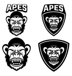 Apes set emblems templates with monkey head vector