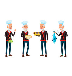 asian old man poses set elderly chef in vector image