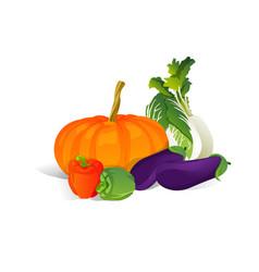 colorful organic design concept fresh vegetables vector image