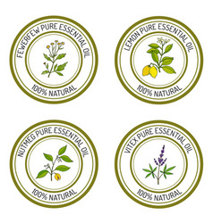 Set of essential oil labels lemon fewerfew vector