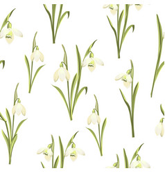 spring seamless pattern of galanthus flowers vector image
