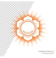Swadhisthana - chakra of human body vector