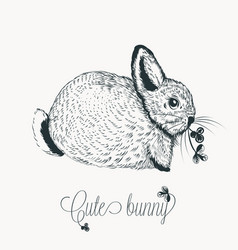 with cute hand drawn little rabbit vector image