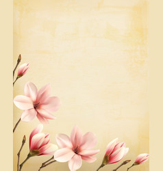 Branch of pink magnolia on old paper vector