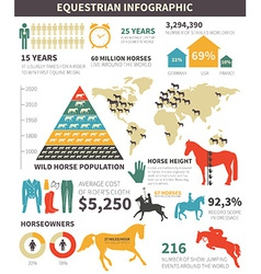Equestrian infographic vector image vector image