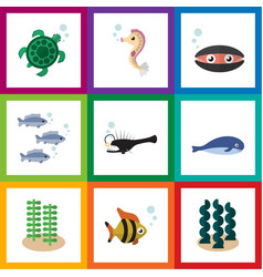 Flat icon nature set of tuna scallop cachalot vector