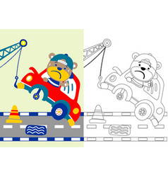Funny bear in car accident on road cartoon vector