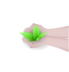 green sprout in hands man green concept vector image