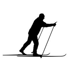 Nordic skier vector image