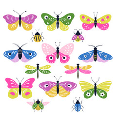 Set colorful decorative folk insects vector