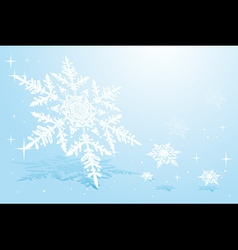 Snowflake on snow vector