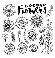 Flowers decorations set Hand drawn vector image vector image