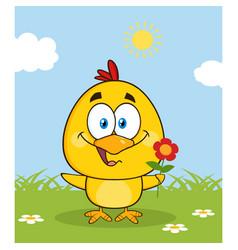 cute yellow chick cartoon character vector image vector image