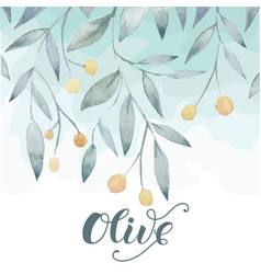 Olive hand drawn background vector