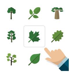Flat icon natural set of oaken linden alder and vector