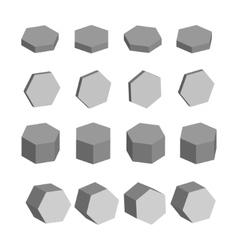 Hexagon monochrome set of geometric prism shapes vector