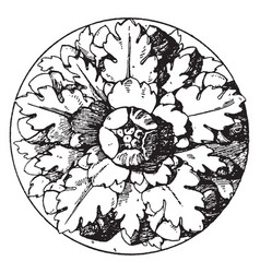 Roman rosette is an artificial rose with five vector