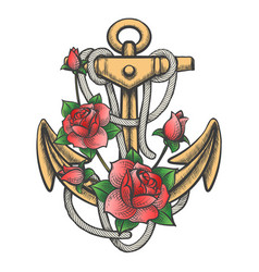 anchor with rose flowers vector image