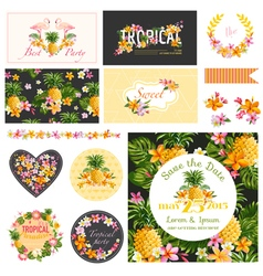 Baby Shower Tropical Theme Design Elements vector image