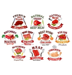 Pork meat and steak bacon and chicken icons vector image