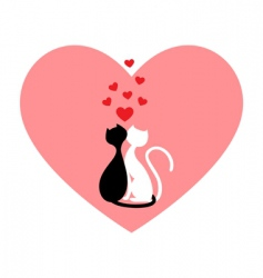 black cat and white cat vector image