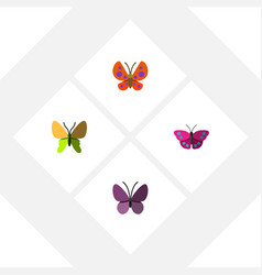 Flat butterfly set of beauty fly violet wing vector