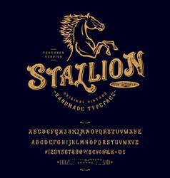 font stallion vintage typeface design vector image