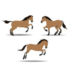 horses collection vector image