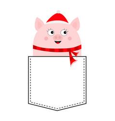 Pig face head in pocket piggy piglet vector